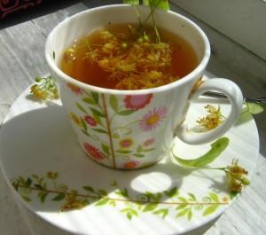 Липовый чай   Липовый чай.